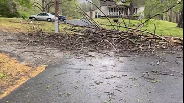 Storm leaves massive brush damage