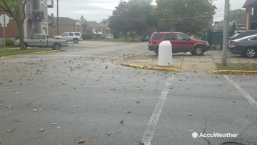 Strong winds kick up leaves after a rainy morning