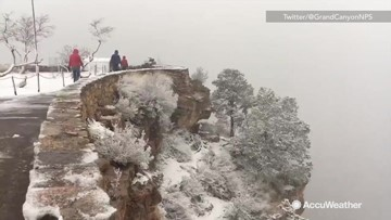 Spring hasn't come to the Grand Canyon yet
