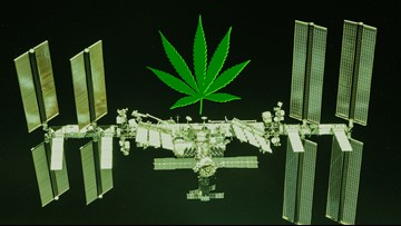 SpaceX is Sending Cannabis to the Space Station for Science