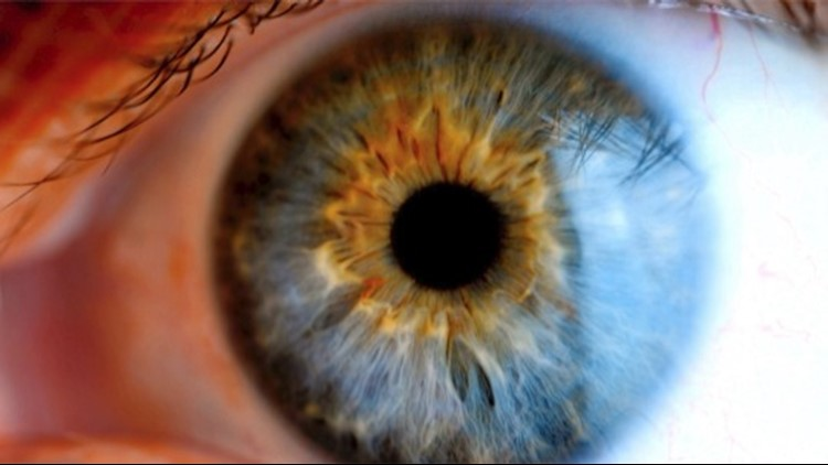 Could This Technique One Day Cure Blindness?