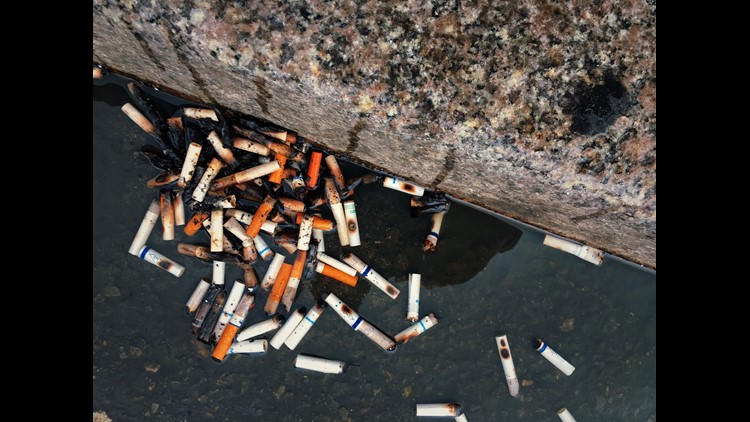 Cigarette Butts In New York City Gutter
