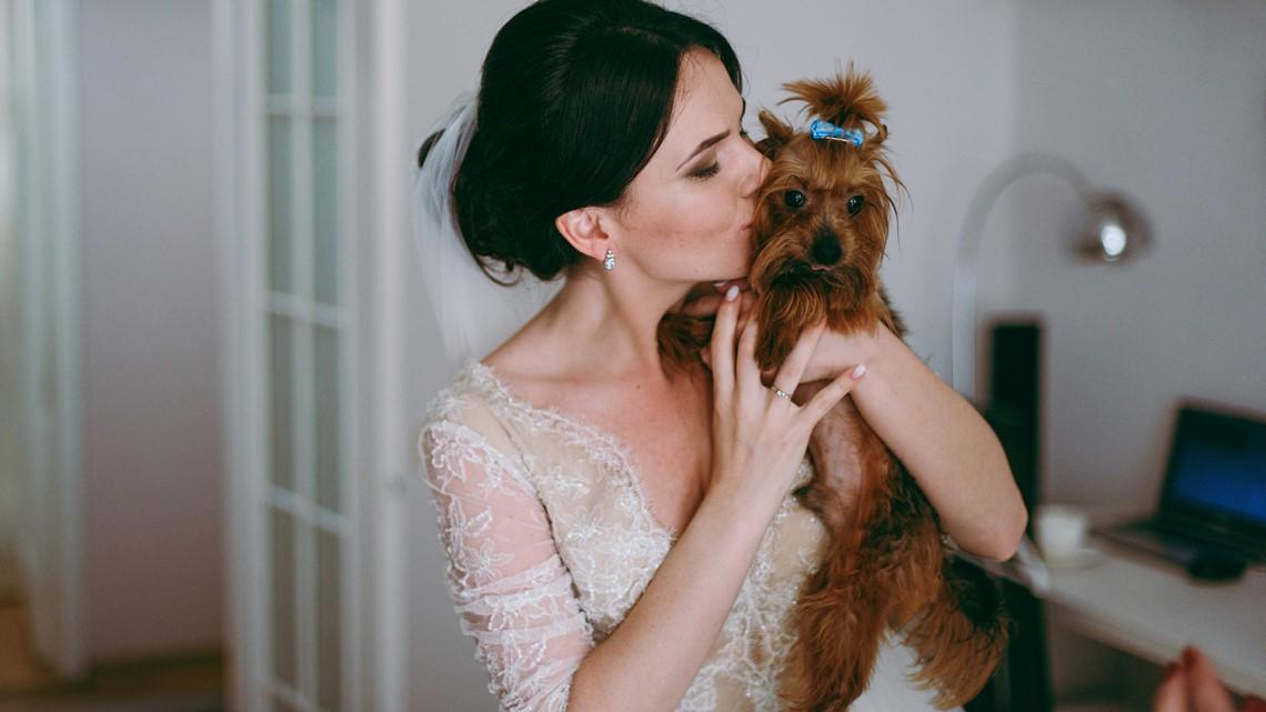 Puppy bouquet bridal fashion show to benefit St. Louis dog rescue
