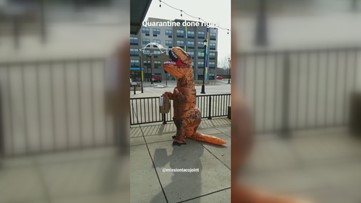 T-Rex tacos: Mission Taco delivers to a curbside dinosaur