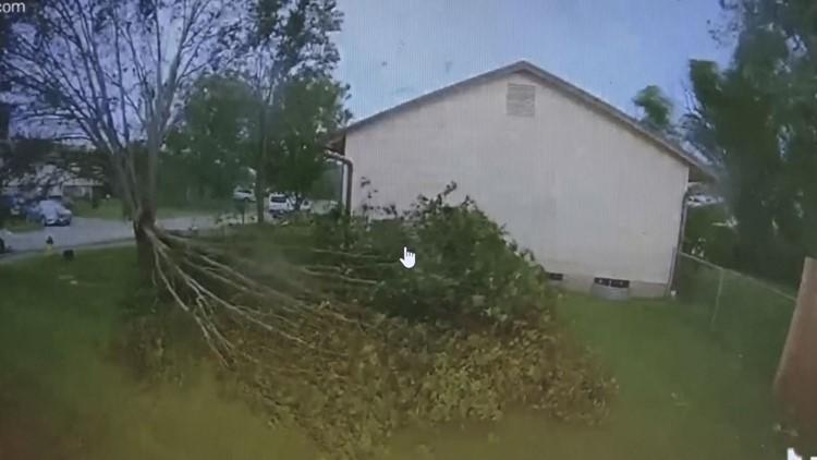 O'Fallon man comes to rescue of cable technician trapped beneath falling tree limb