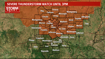 Storm Alert | Severe Thunderstorm Watch until 3 p.m.