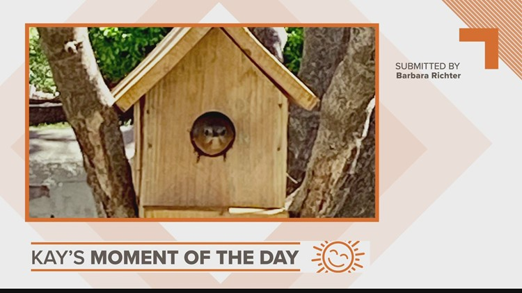 Kay's Moment of the Day: April 19