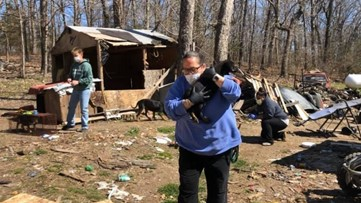 23 dogs rescued by Stray Rescue amid COVID-19 pandemic