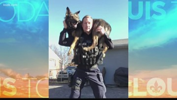 Kirkwood K9 takes a bite out of crime while becoming Instagram famous