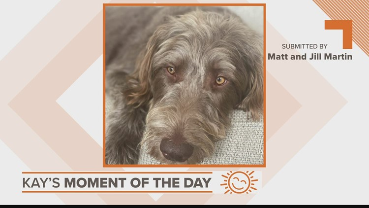 Kay's Moment of the Day: May 24