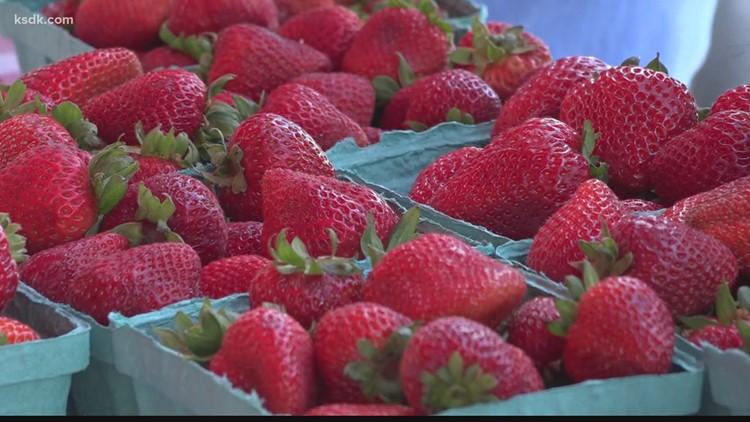 Kimmswick Strawberry Festival returns red and ripe