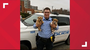 St. Louis police officers rescue 2 puppies