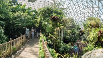 Free admission to Missouri Botanical Garden Wednesday in