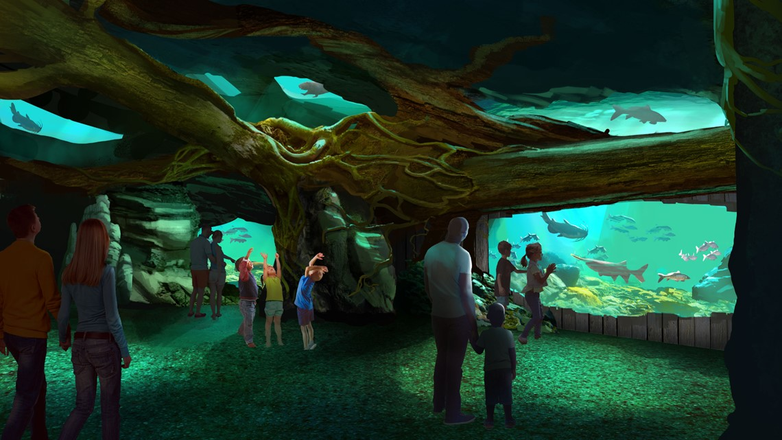 A first look inside the new St. Louis Aquarium at Union ...