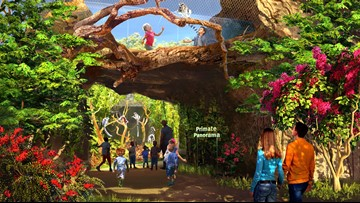 Saint Louis Zoo debuts plans for outdoor primate exhibit