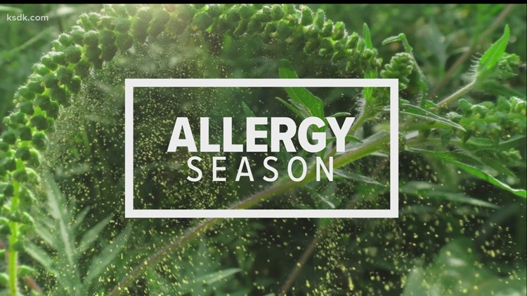 Consumer Reports: Allergy season in the time of COVID-19