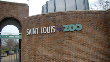 Prop Z passes, will raise taxes to help the Saint Louis Zoo