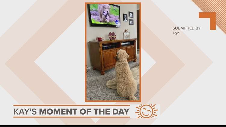 Kay's Moment of the Day: March 17