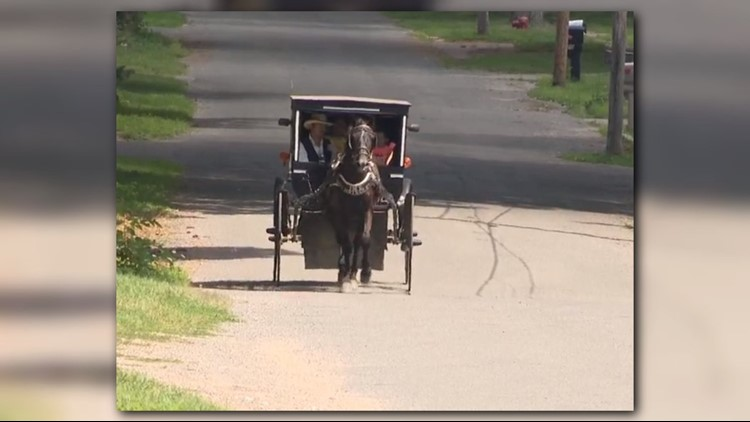 Amish man starts 'Uber' ride service with his horse and buggy
