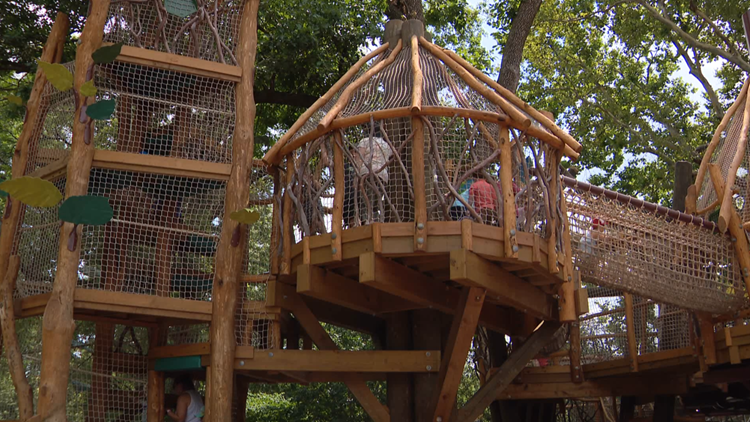 The Saint Louis Zoo's new exhibit is like a jungle gym for guests and monkeys