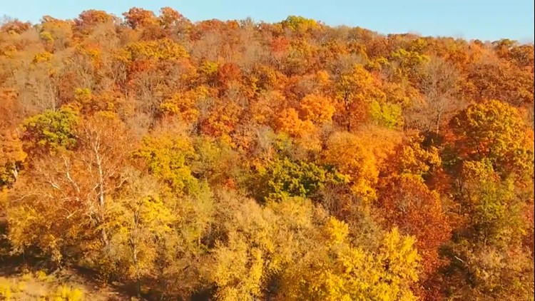 Here's when fall colors are expected to peak in Missouri and Illinois