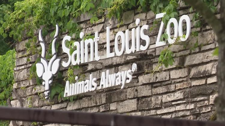 Saint Louis Zoo announces summer hours