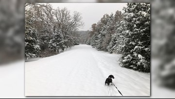 Snow-vember | A history of November snow storms in St. Louis