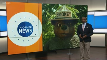 In Other News: Optimists sleep later, Smokey the Bear turns 75, worrying a waste of time