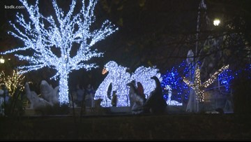 Vote for St. Louis Zoo to win best holiday lights display