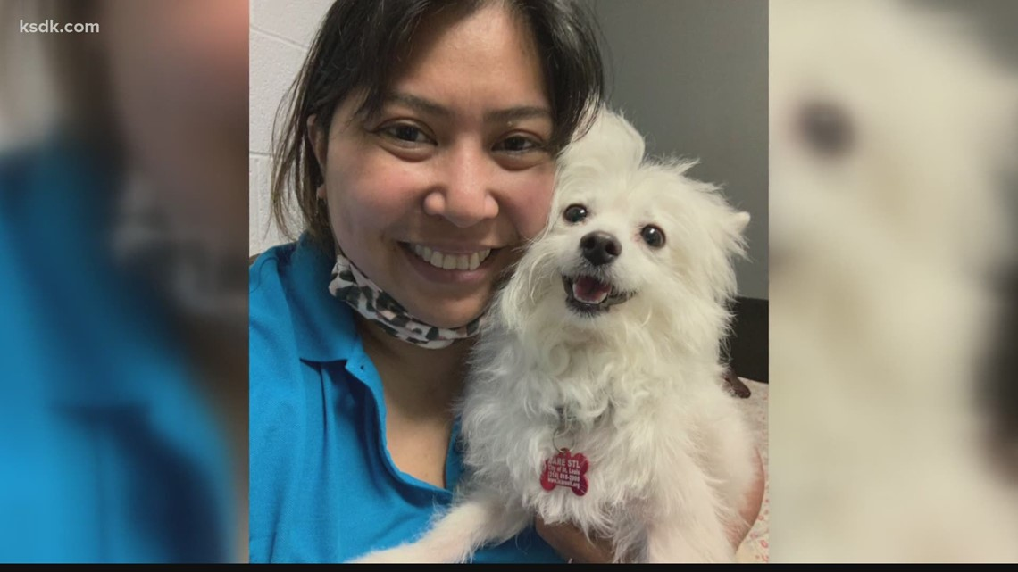 Meet the woman trying to find homes for St. Louis pets surrendered during the pandemic