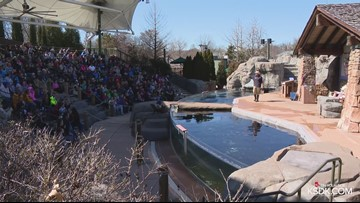 Saint Louis Zoo to close early on Friday