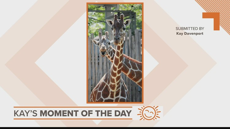 Kay's Moment of the Day: Sept. 16, 2021