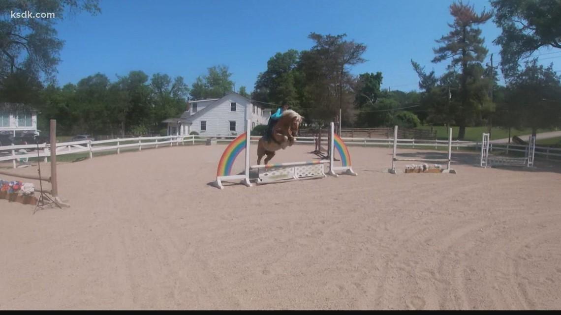 The secrets of equestrian riding