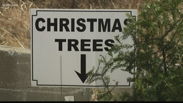 Where you can recycle your Christmas tree and other stuff