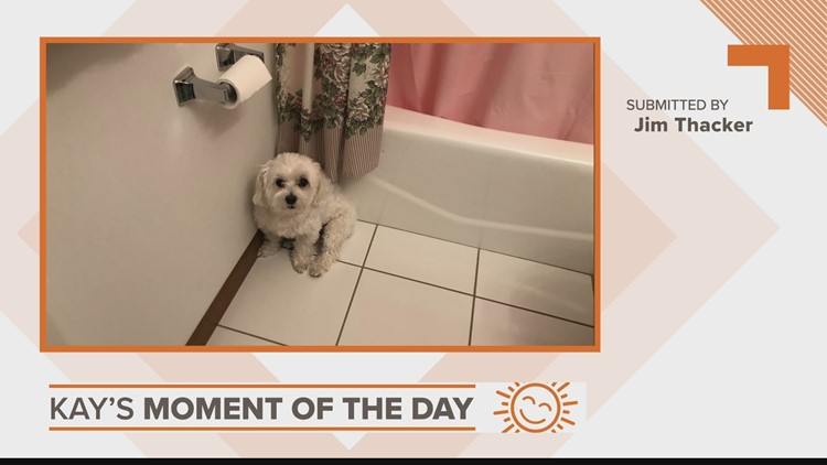 Kay's Moment of the Day: March 26