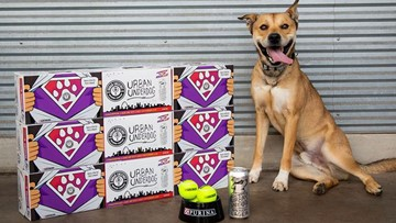 Buy an 8-pack of beer, help a St. Louis shelter pet