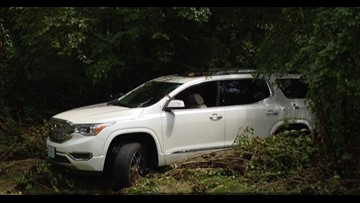 Woman clings to tree for 40 minutes after car washed away by flash flooding