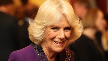 How Camilla, Duchess of Cornwall, earned back the public's respect