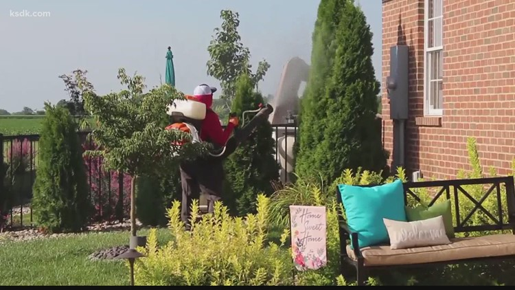 Mosquito Authority offering July 4th promotion