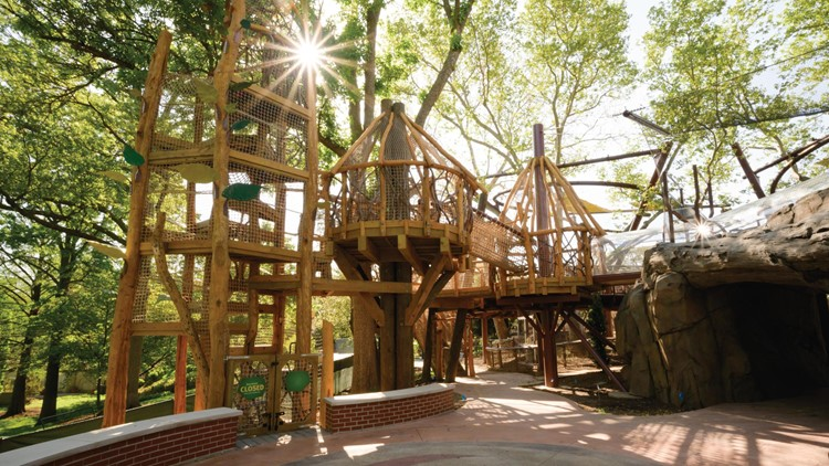 PHOTOS: A first look at the zoo's new Primate Canopy Trails