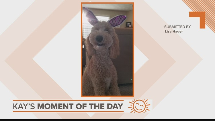 Kay's Moment of the Day: April 6, 2021