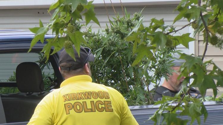 Kirkwood home explosion leads police to seize marijuana plants