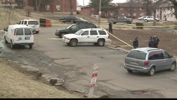 Pregnant woman, two teens struck by stray bullets