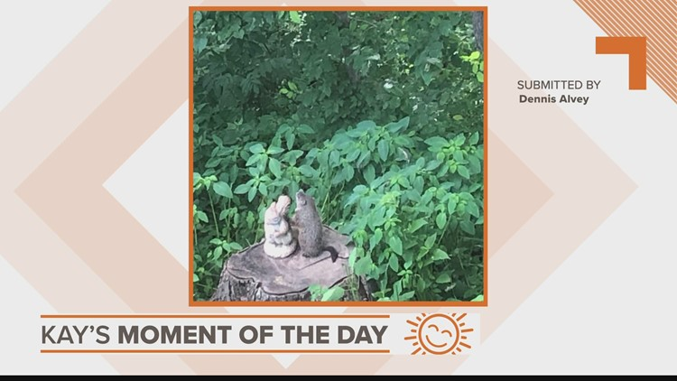 Kay's Moment of the Day: June 23, 2021