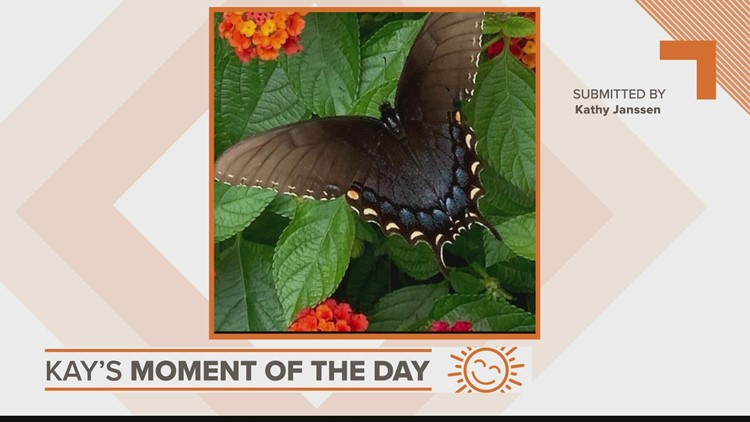 Kay's Moment of the Day: Sept. 1, 2021