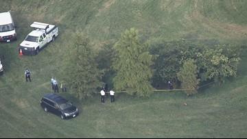 Man found dead in field in south St. Louis