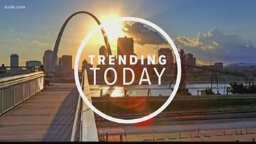 St. Louis lands on 'best drivers' list