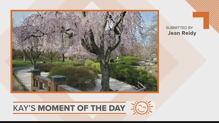 Kay's Moment of the Day: April 1