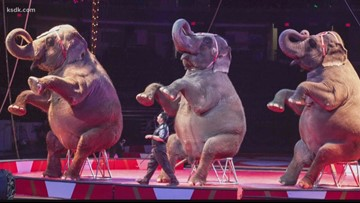 The 77th Moolah Shrine Circus will have you on the edge of your seat