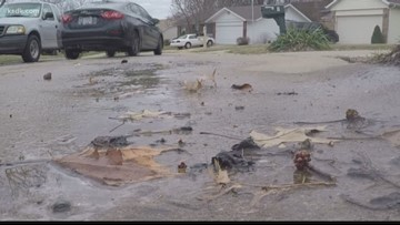 Swimming pool or backyard? Cancer patient gets no help with flooding issue on county line